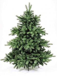 Groothandel Kerstbomen, Grossiste Sapin de Noël,Christmas tree  wholesale