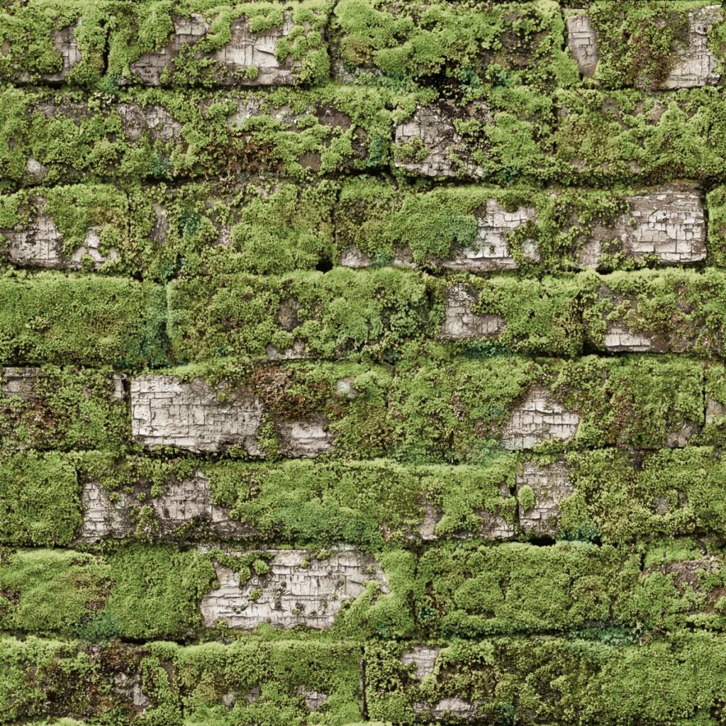 papier-peint-briques-anciennes-blanches-vegetalisees
